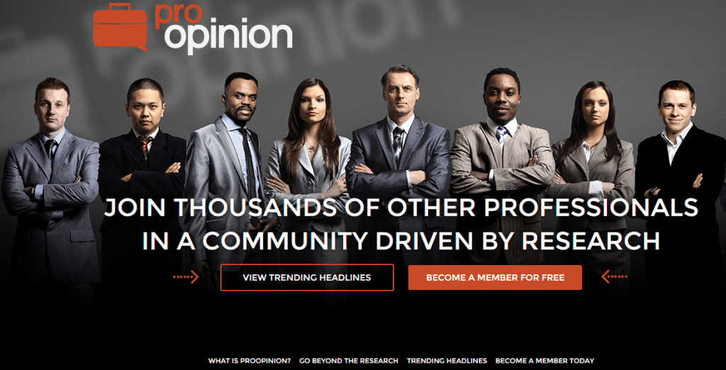 Screenshot for ProOpinion landing page