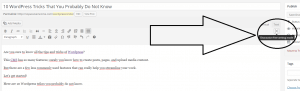how to enable distraction-free writing mode in wordpress - screenshot at NoPassiveIncome blog dashboard