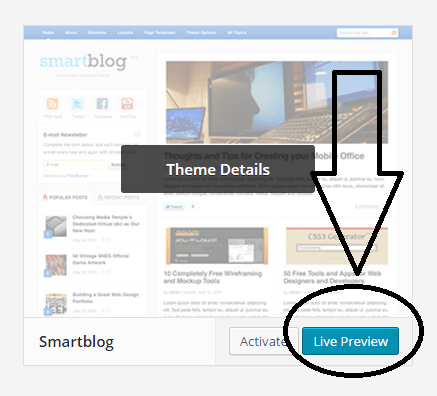 live preview of theme installed on wordpress blogs - screenshot at NoPassiveIncome blog