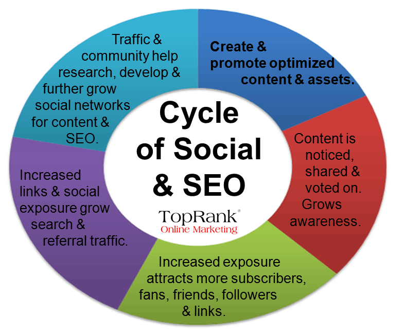 Cycle of Social and SEO
