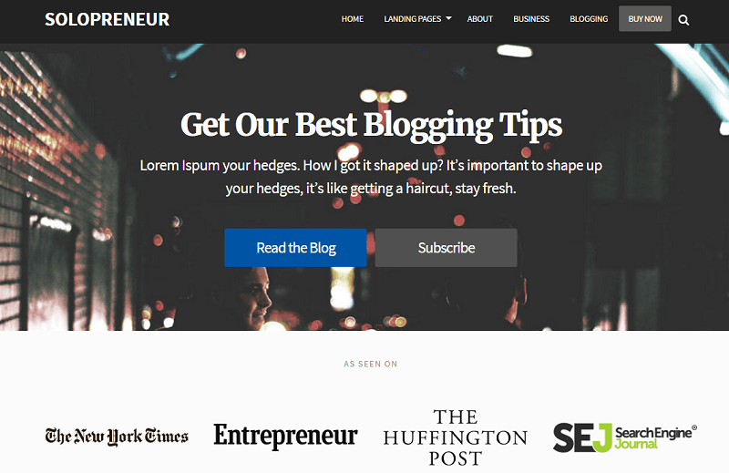 solopreneur features _ first landing page example